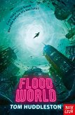 Floodworld (eBook, ePUB)