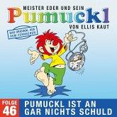 46: Pumuckl ist an gar nichts schuld (Das Original aus dem Fernsehen) (MP3-Download)