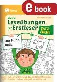 Kleine Leseübungen für Erstleser - Satzebene (eBook, PDF)