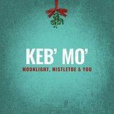 Moonlight,Mistletoe And You