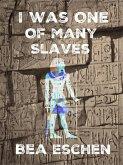 I Was One Of Many Slaves (eBook, ePUB)