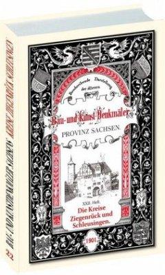 Bau- und Kunstdenkmäler der Kreise SCHLEUSINGEN und ZIEGENRÜCK 1901 - Bergner, Heinrich