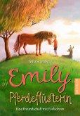Emily Pferdeflüsterin
