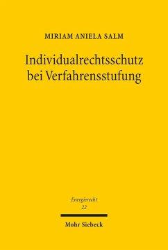 Individualrechtsschutz bei Verfahrensstufung (eBook, PDF) - Salm, Miriam Aniela