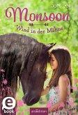 Wind in der Mähne / Monsoon Bd.1 (eBook, ePUB)