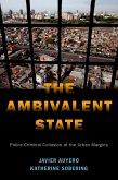 The Ambivalent State (eBook, ePUB)
