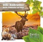 Große Waldbewohner: Hirsche, Eichhörnchen und Füchse