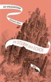 Im Sturm der Echos / Die Spiegelreisende Bd.4 (eBook, ePUB)