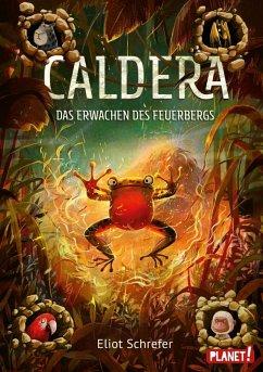 Das Erwachen des Feuerbergs / Caldera Bd.3