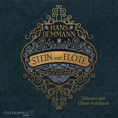 Stein und Flöte, 4 MP3-CD - Bemmann, Hans