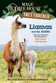 Llamas and the Andes (eBook, ePUB)