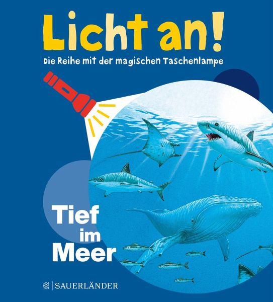 Buch-Reihe Licht an!