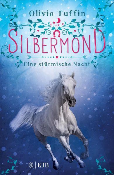 Buch-Reihe Silbermond