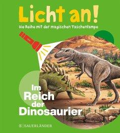 Im Reich der Dinosaurier / Licht an! Bd.1