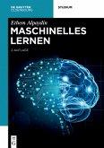 Maschinelles Lernen (eBook, ePUB)