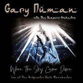 When The Sky Came Down(Live At The Bridgewater Hal