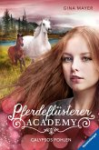 Calypsos Fohlen / Pferdeflüsterer Academy Bd.6 (eBook, ePUB)