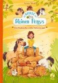 Ein Heuhaufen voller Geheimnisse / Die Schule der kleinen Ponys Bd.1