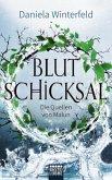 Blutschicksal / Die Quellen von Malun Bd.3