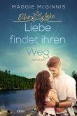Liebe findet ihren Weg / Echo Lake Bd.3