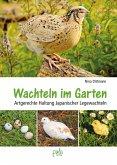 Wachteln im Garten (eBook, PDF)