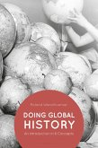 Doing Global History (eBook, ePUB)