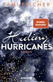 Hiding Hurricanes / Fletcher-University Bd.3