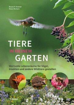 Tiere in meinem Garten - Kremer, Bruno P.; Richarz, Klaus