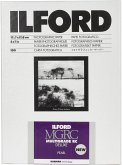 1x100 Ilford MG RC DL 44M 13x18
