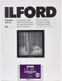 1x100 Ilford MG RC DL 44M 18x24