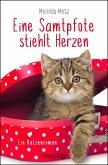 Eine Samtpfote stiehlt Herzen / Samtpfoten Bd.2 (eBook, ePUB)