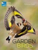 RSPB Garden Birds (eBook, PDF)