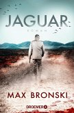 Jaguar (eBook, ePUB)