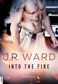 Into the Fire Bd.1 (eBook, ePUB)