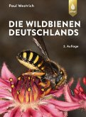 Die Wildbienen Deutschlands (eBook, ePUB)