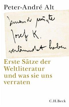 'Jemand musste Josef K. verleumdet haben ...' - Alt, Peter-Andre