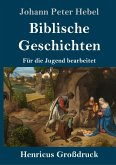 Biblische Geschichten (Großdruck)