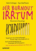 Der Burnout-Irrtum (eBook, PDF)
