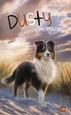 Gefährliche Ferien / Dusty Bd.5 (eBook, ePUB)