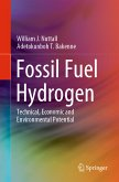 Fossil Fuel Hydrogen (eBook, PDF)