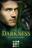 Son of Darkness 1: Göttliches Gefängnis (eBook, ePUB)