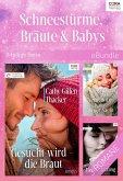 Schneestürme, Bräute & Babys (3-teilige Serie) (eBook, ePUB)