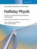 Halliday Physik für natur- und ingenieurwissenschaftliche Studiengänge (eBook, PDF)
