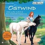Mikas großer Auftritt & Eine zauberhafte Begegnung / Ostwind für Erstleser Bd.5+6 (1 Audio-CD)