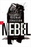 NEBEL / HULDA Trilogie Bd.3