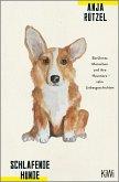 Schlafende Hunde (eBook, ePUB)