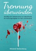 Trennung überwinden: Der Weg vom Liebeskummer zur Lebensfreude. Ein Trennungsratgeber für Herz und Verstand. (eBook, ePUB)