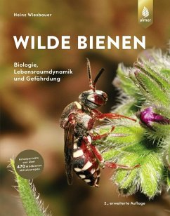 Wilde Bienen - Wiesbauer, Heinz