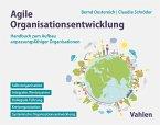 Agile Organisationsentwicklung (eBook, PDF)
