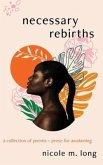 Necessary Rebirths (eBook, ePUB)